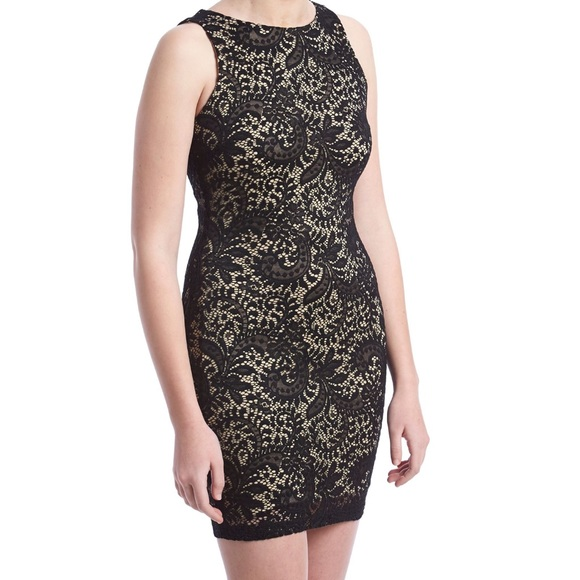 f131e4674 Emerald Sundae Dresses | Nwt Lined Lace Sheath Dress | Poshmark